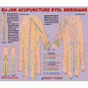 Sujok acupuncture byol meridian chart